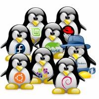 Install-Party à la Cyber-Base de Pau le 17 novembre 2012